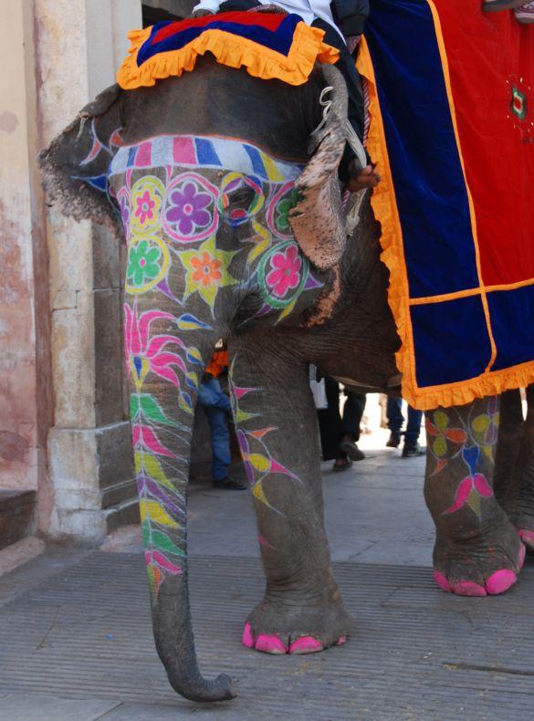 DSC_2689IndiaRajasthanJaipurAmberFortFortAjmer