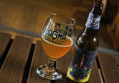 hazy rocket, dogma brewery