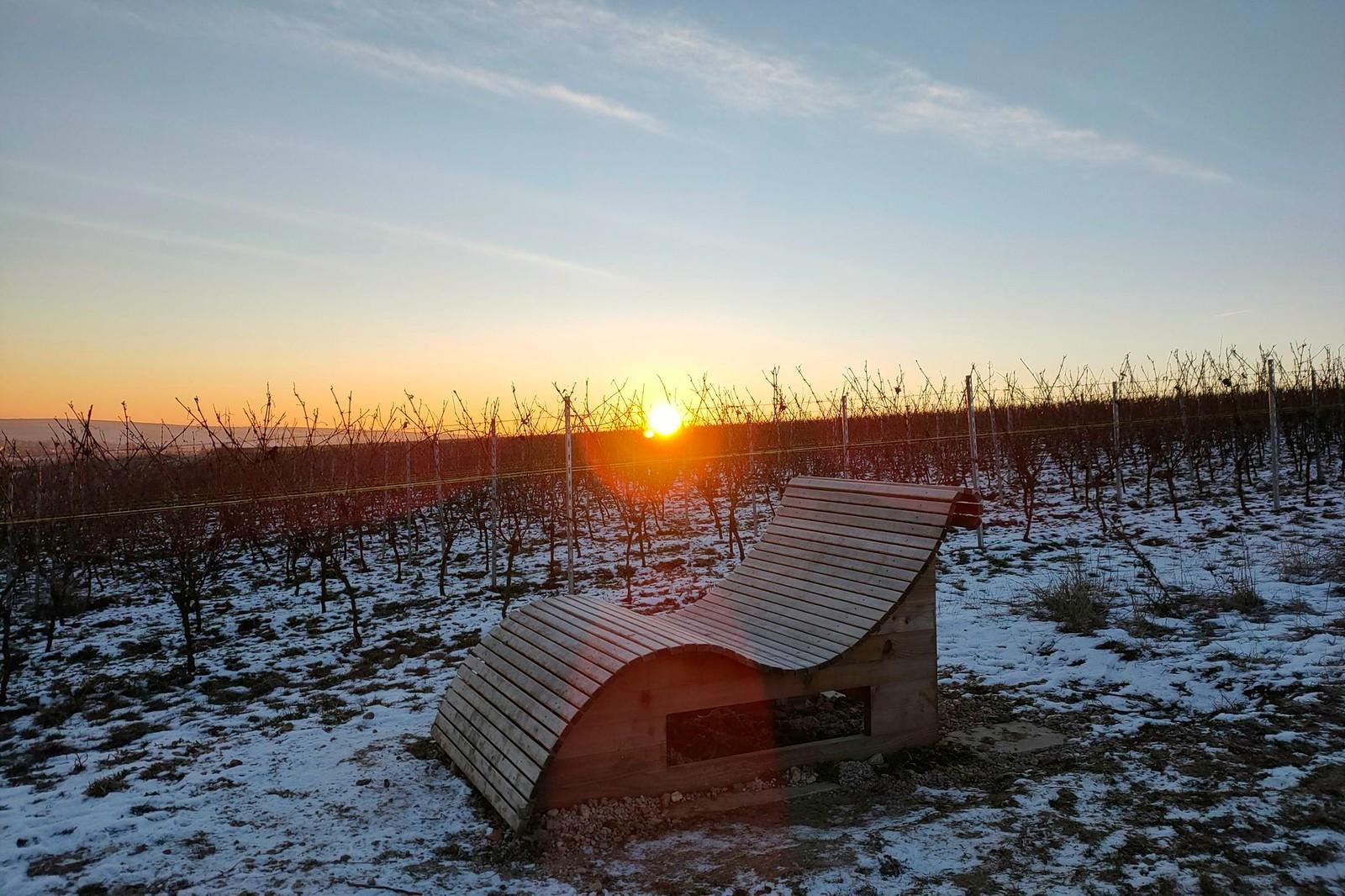 Sonnenaufgang über der Wohlfühlbank