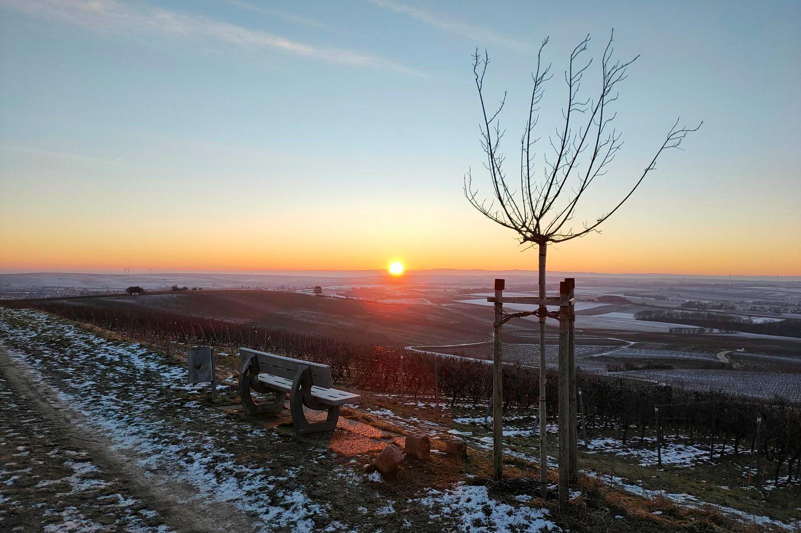 Sonnenaufgang an der Hiwweltour Zornheimer Berg