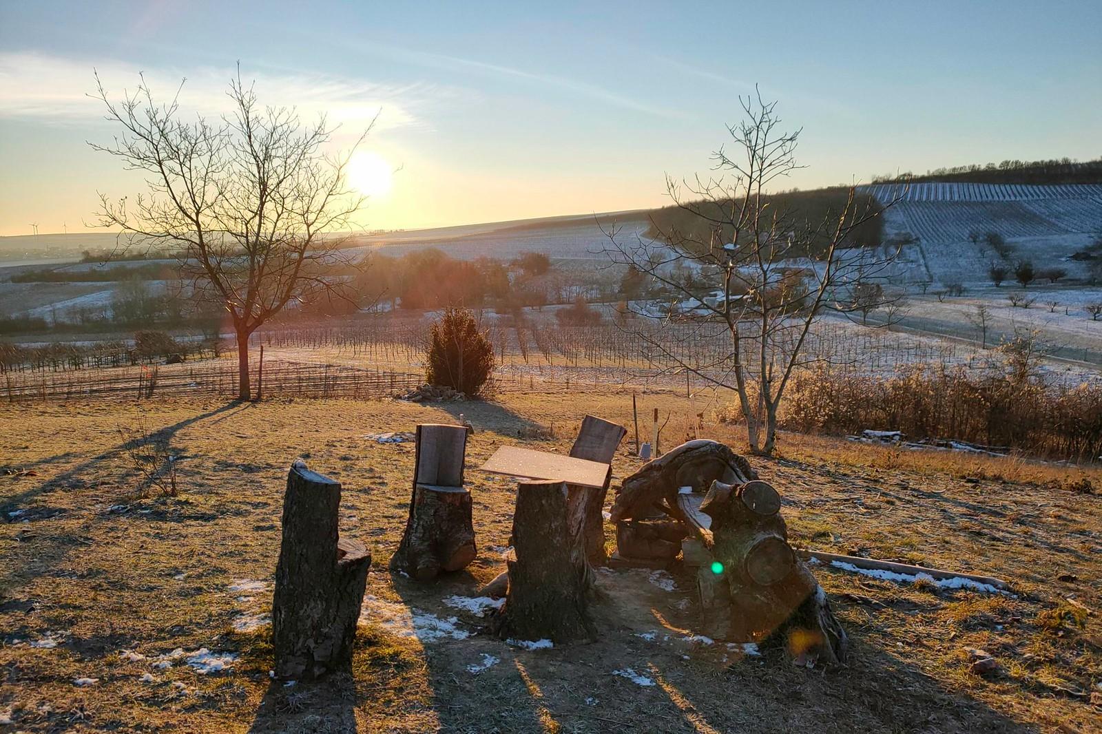 SunriseRun Hiwweltour Zornheimer Berg mit 8 und Schmackes