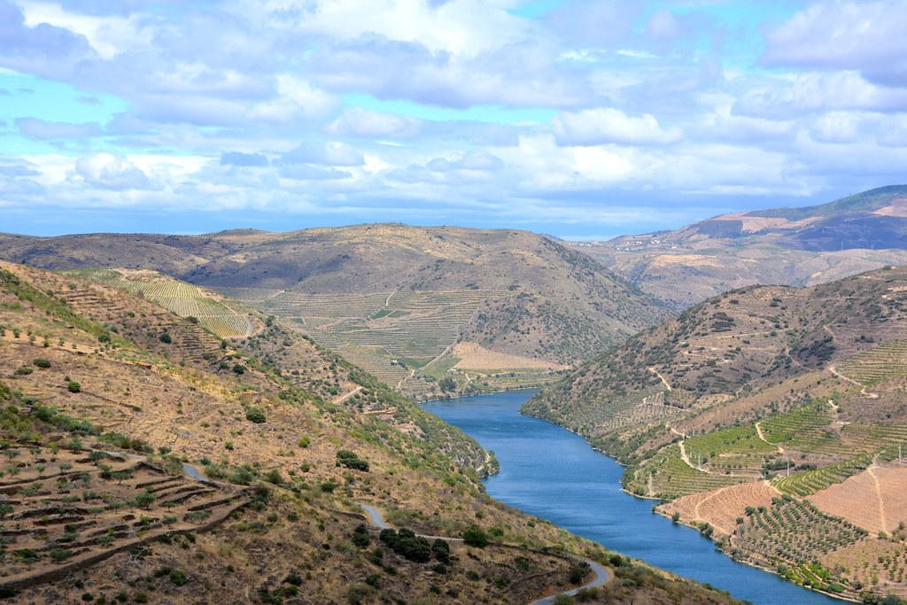 Douro Valley, next to Vila Nova de Foz Côa