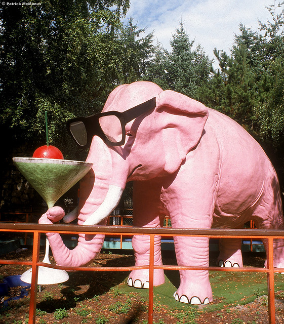 Old School Cool - Pink Elephant - Seattle Center