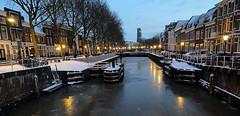 Foto van de maand - Feb 2021 - Reflectie in de straat - Rob