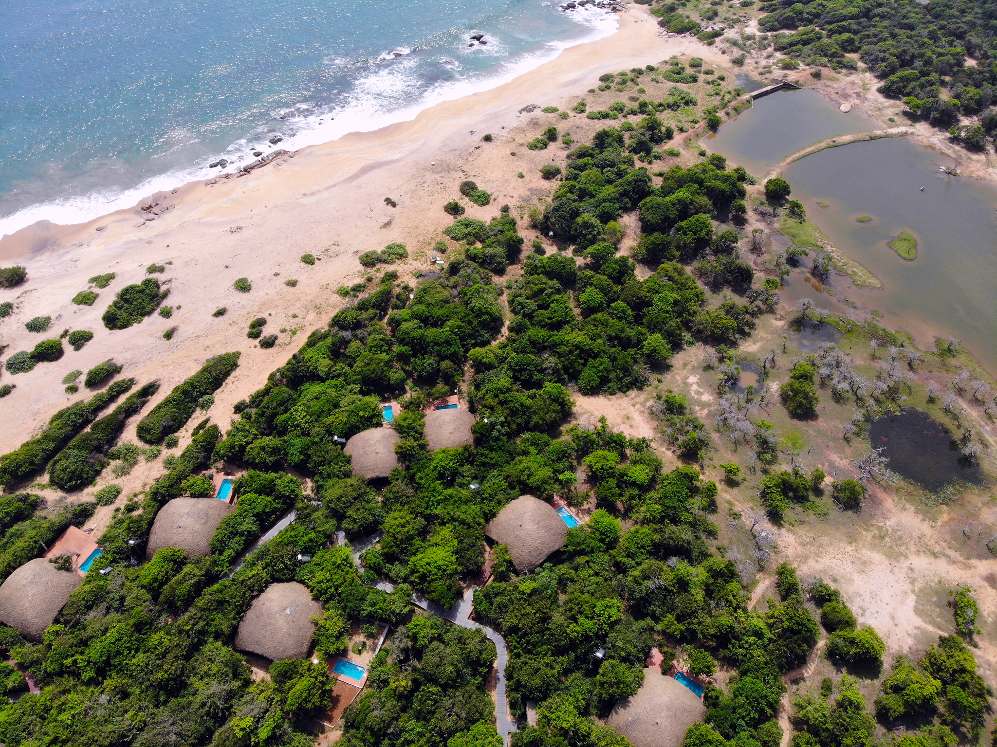 Hotel Chena Huts by Uga Escapes Yala Sri Lanka - Thewotme chena huts - 50943784251 36aeef60c2 k - Chena Huts by UGA Escapes, un pequeño paraíso en Yala