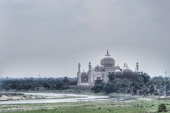 The Taj - a view from the Agra Fort