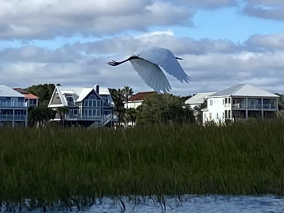 Pawleys Island Marsh, SC
