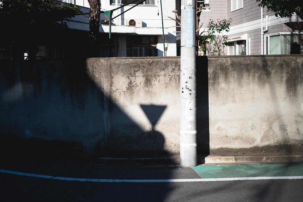 NZ7_7888