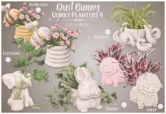 dust bunny @ kustom9