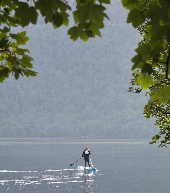 Paddle Boarding Tranquillity.