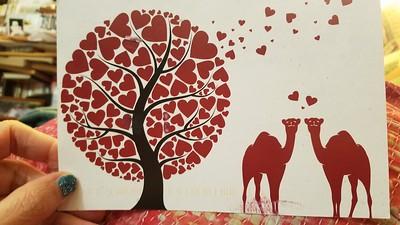 Camel Valentine