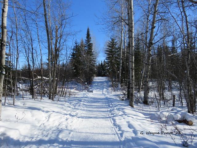 Scout Rock Trail