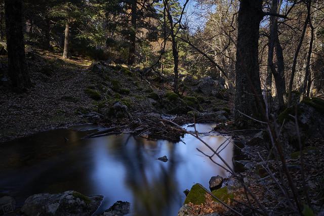 The pond II