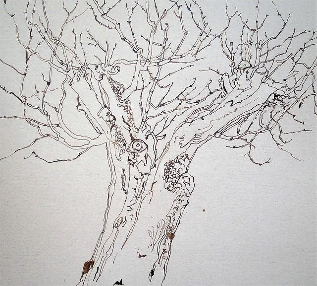 Cerisier 2 - étape 1