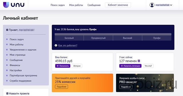 Unu - заработок без вложений | Заработать 25 000 рублей не выходя из дома без вложений – ТОП 20 сервисов