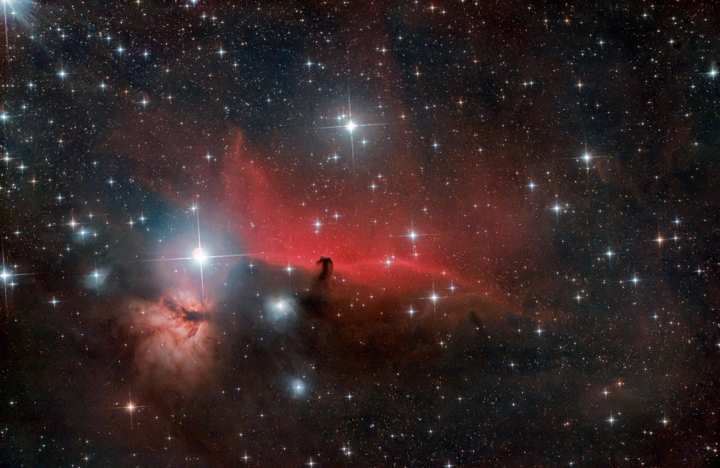 ic434: canasson cosmique ! 50946877071_e6c90e4f69_o