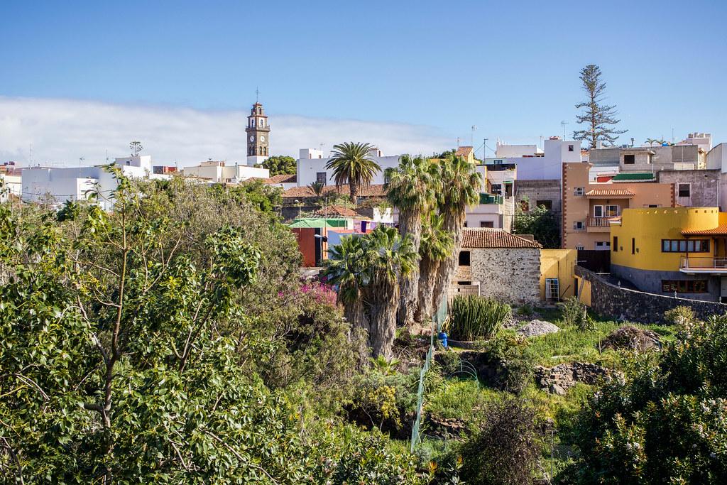 Barranco de Triana en Buenavista