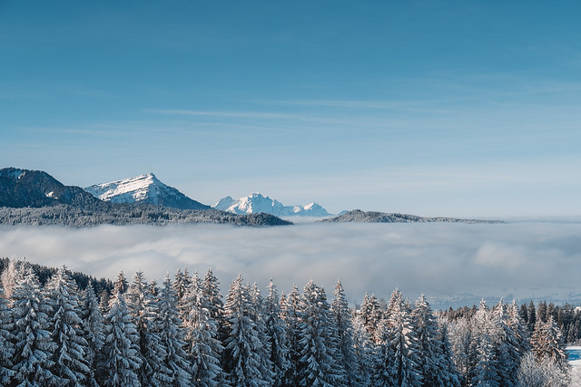 over the fog, cold