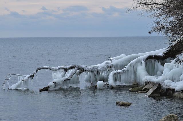 Superior Park, Etobicoke, Toronto