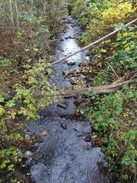 Beecher Creek