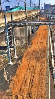 新幹線パレード