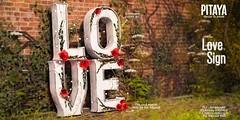 Pitaya - Love Sing @ Cupid Inc