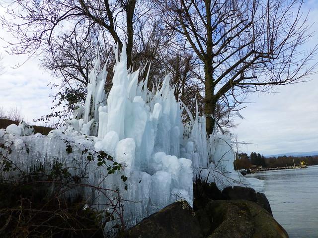 02.15.21.Un hiver au bord du Lac Léman (France)