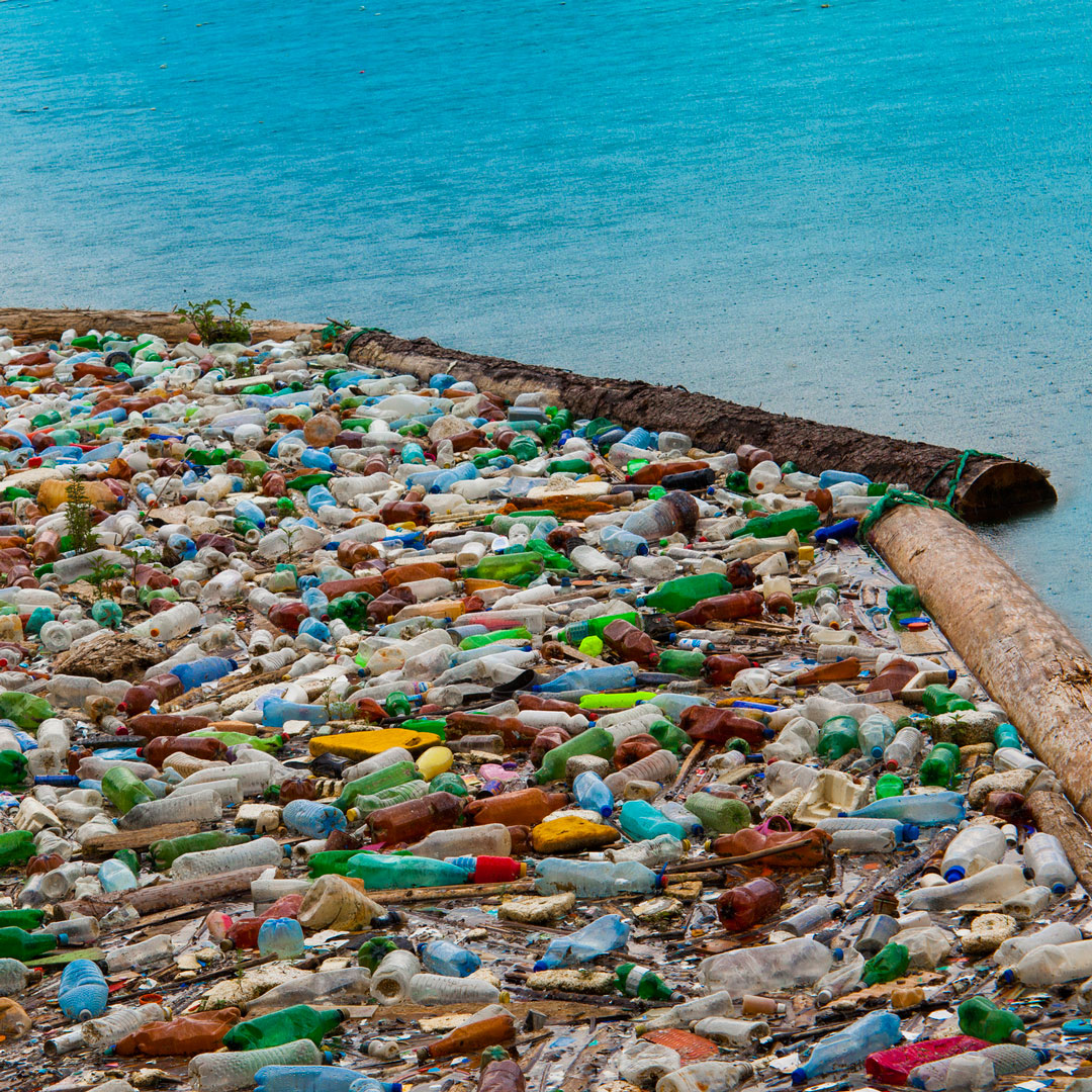 A large pile of plastic bottles next to the sea