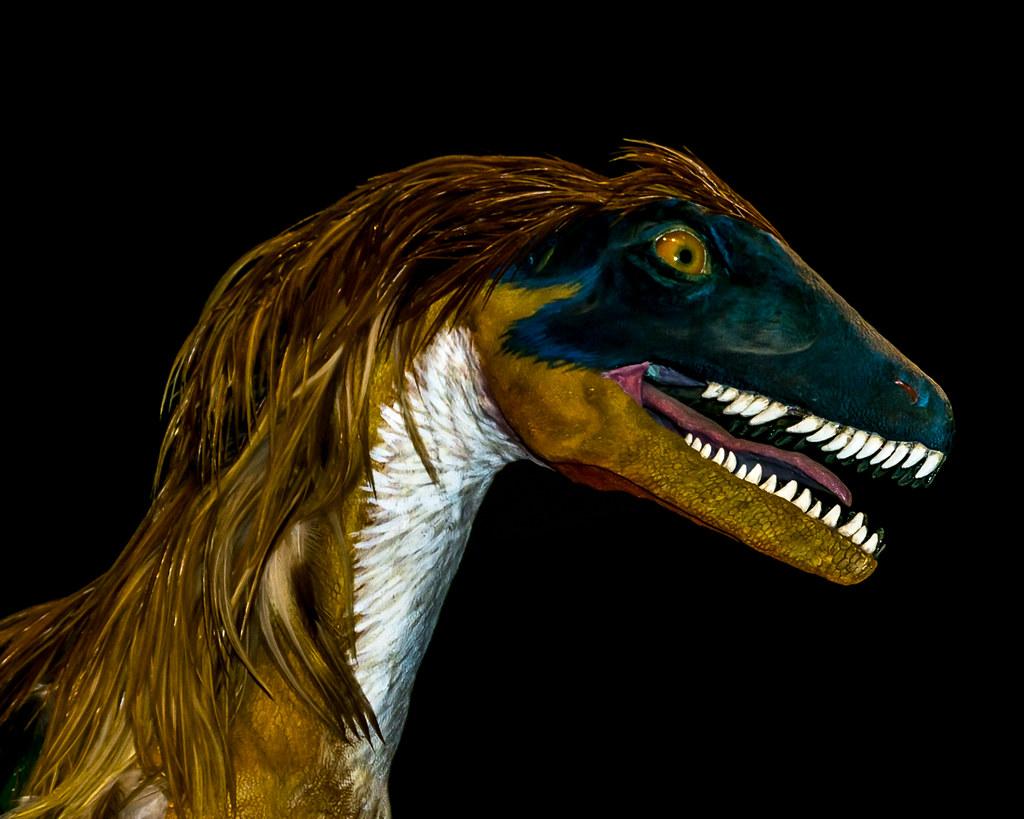 Punky dinosaur