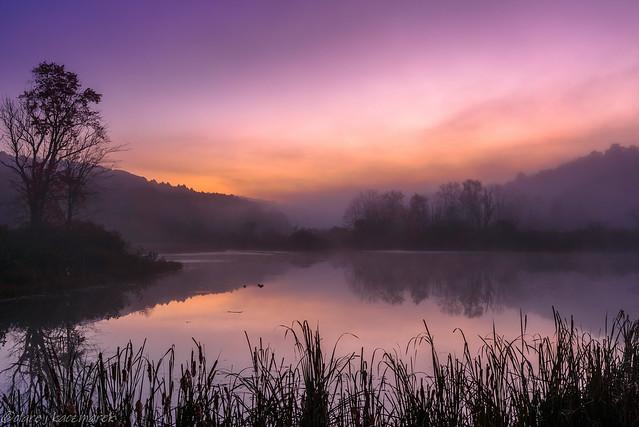 Late autumn sunrise