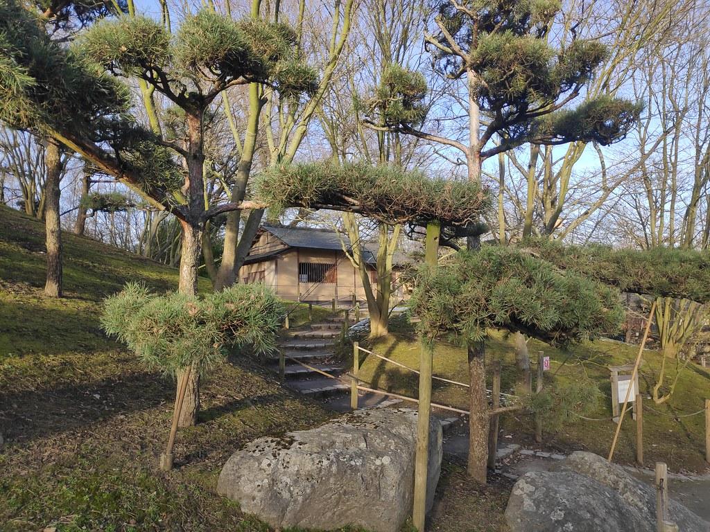 Japanese Garden. Hasselt.