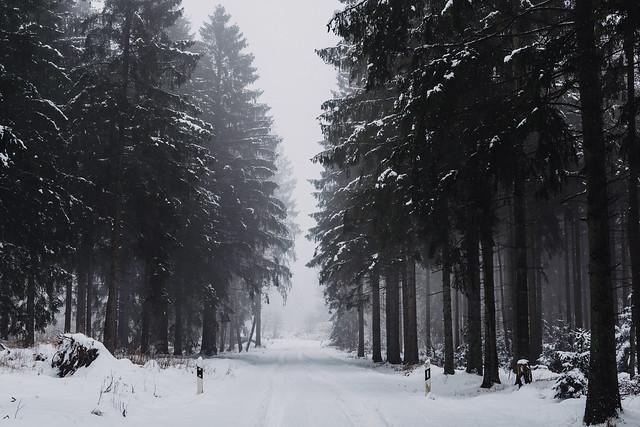 snow   l   1.1   l   2021