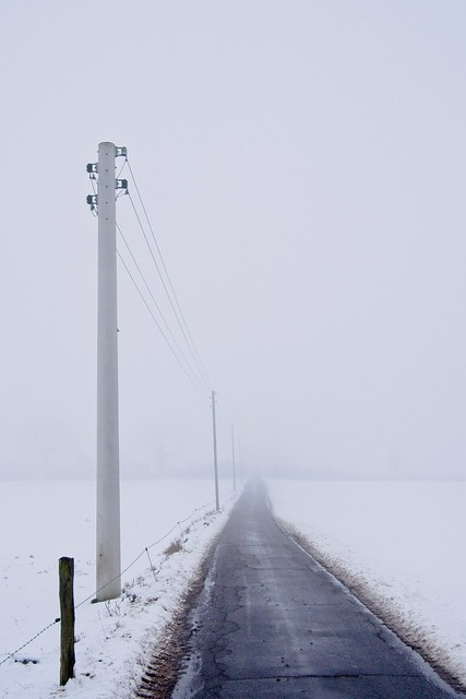 Foggy day - end of the overhead line outside the village   February 16, 2021   Wankendorf - Plön District - Schleswig-Holstein - Germany