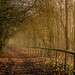 Urmston Meadows, Urmston, Manchester, North West England