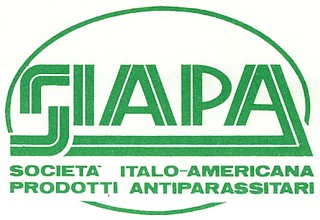 Siapa 1981