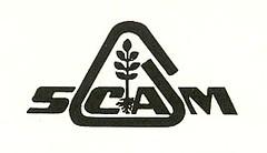 Scam 1980