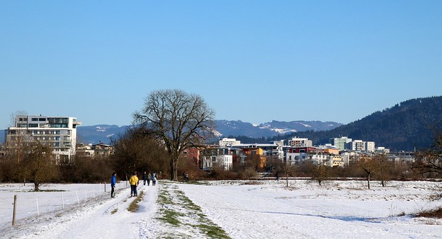 Winter panorama VI
