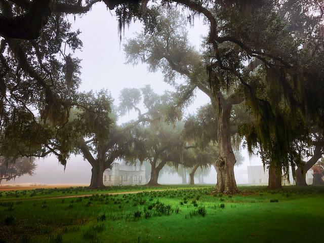 mansion ruins in morning fog
