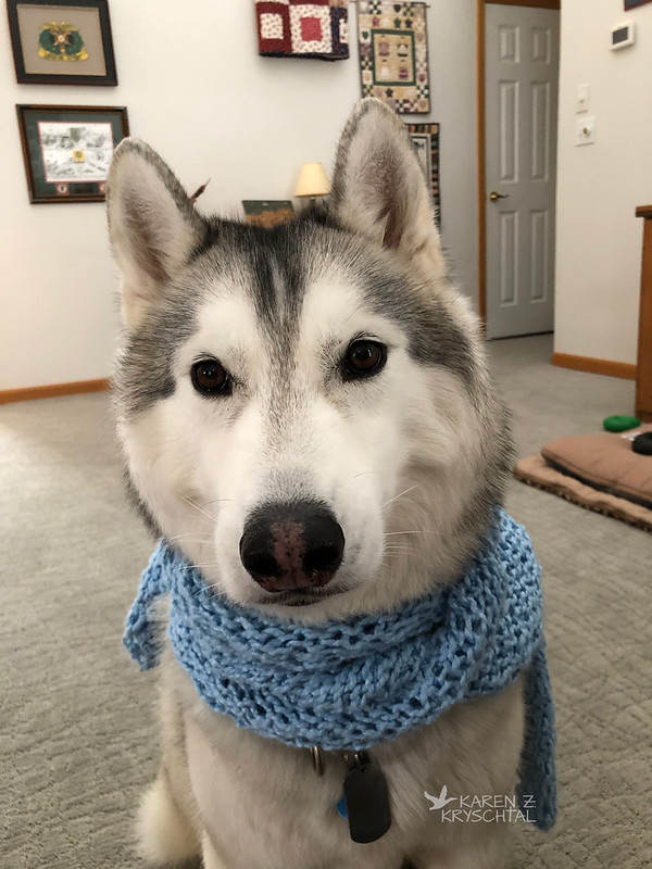 IMG_3613RagnarScarf