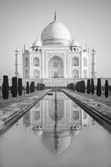 India / Agra: Taj Mahal