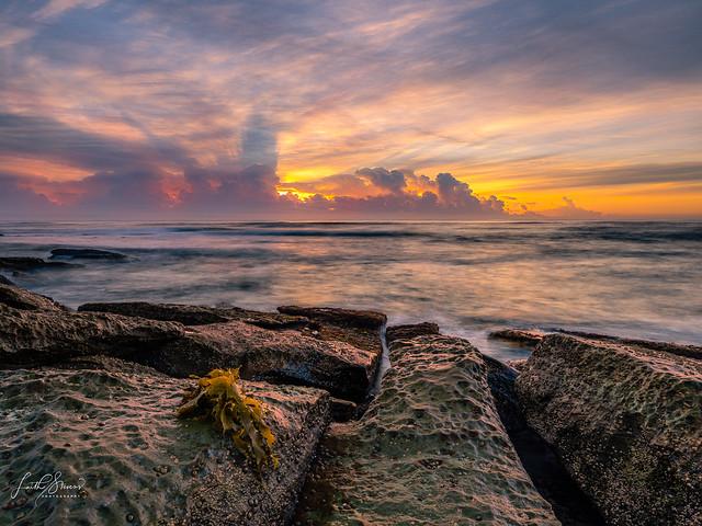 Toowoon bay Sublime Sunrise