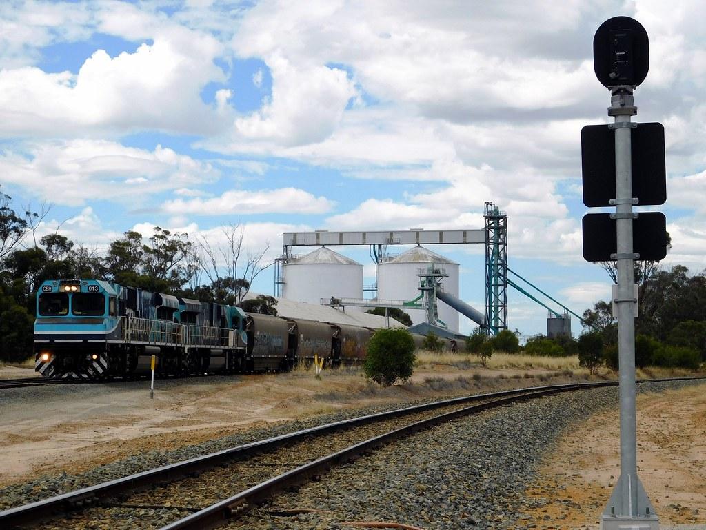 013/012 load at CBH Broomehill by Western Australian Railway Photos.
