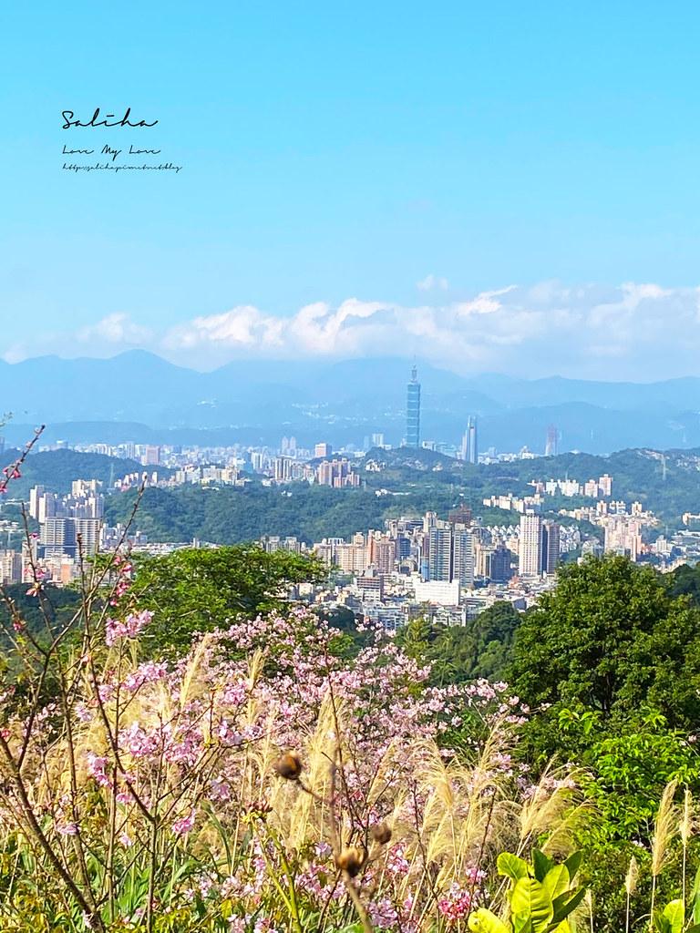 台北景點推薦台北景觀餐廳賞櫻景點騰龍御櫻景觀咖啡廳可看101景色超棒 (1)