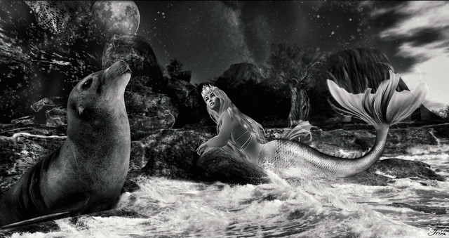 The sea lion and the mermaid