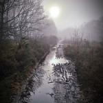 Muddy path misty mornings