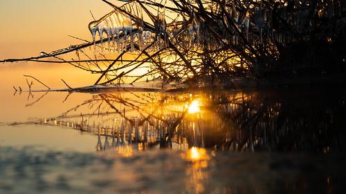ice icicles vorst winter morning sunrise reflections bokeh sun bokehlicious