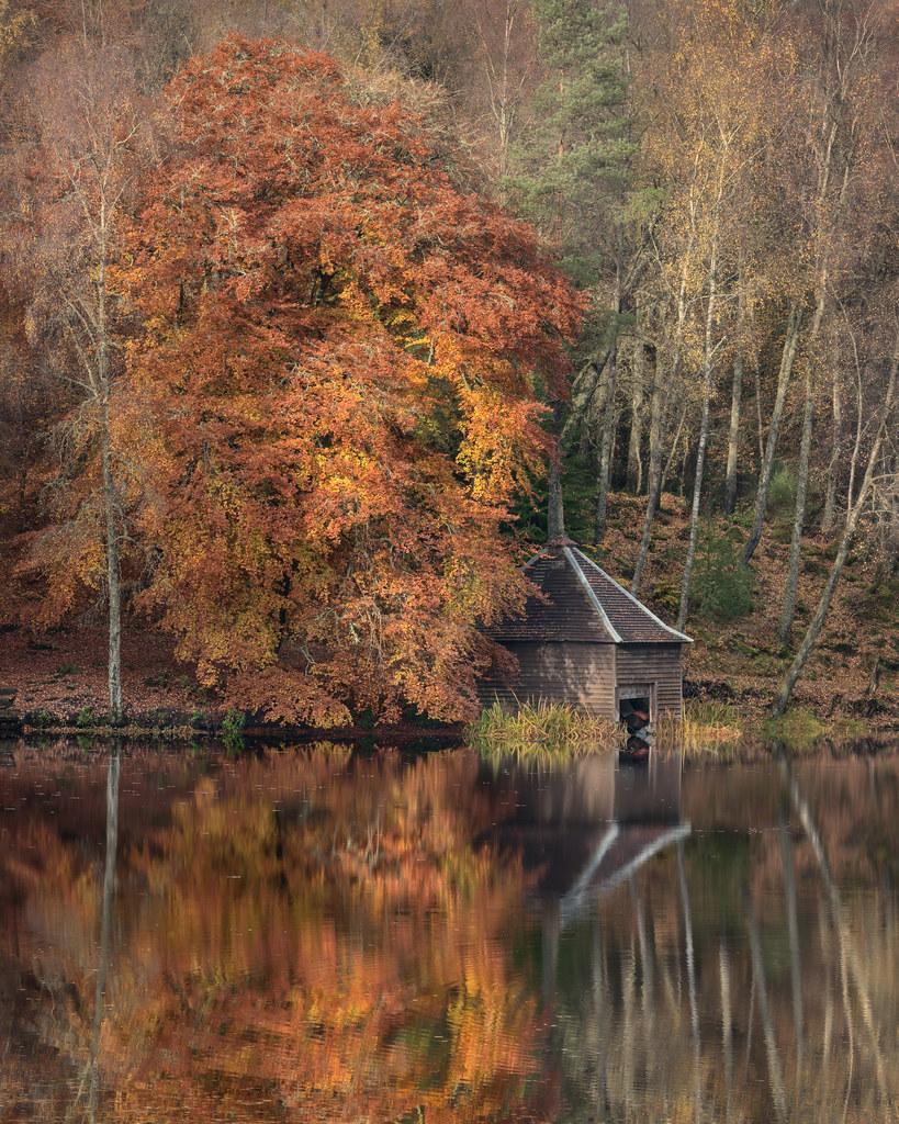 Loch Dunmore   Faskally Wood   Perthshire
