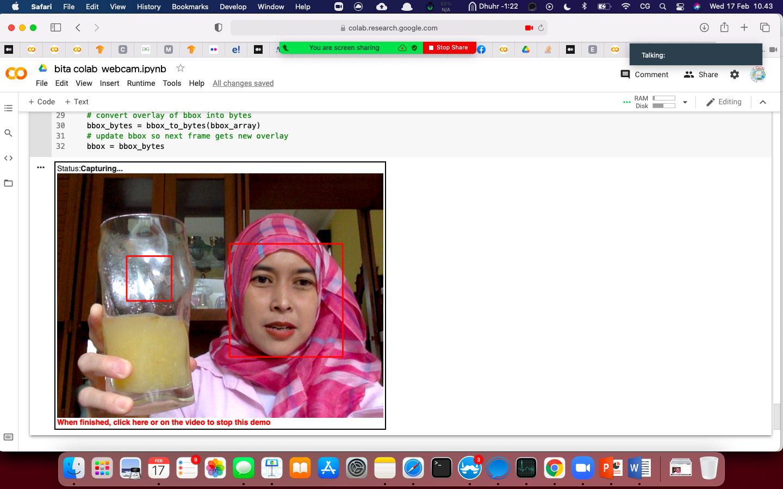 Screen Shot 2021-02-17 at 10.43.48