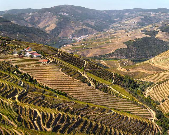 Viñedos del Duero en Portugal