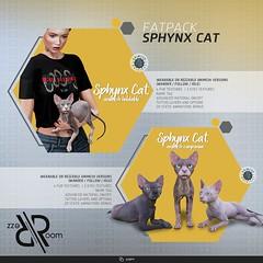 [REZZ ROOM] SPHYNX CAT ANIMESH
